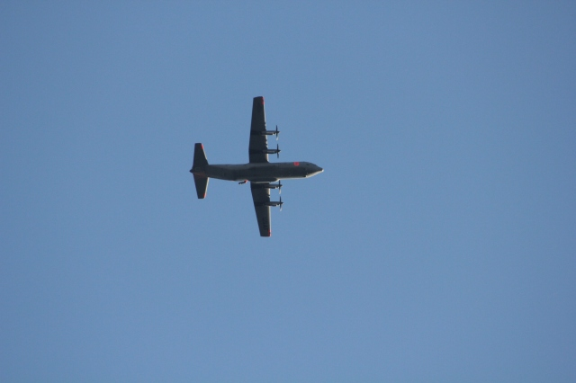 C-130 Fire Bomber